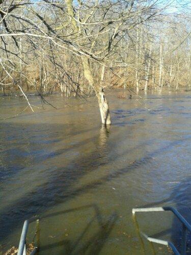 Riverside park, River Side Park, flooded park, park, river, riverside, River side, little pateuxeunt river, pateuxeunt river